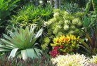 Alawa Sustainable landscaping 3